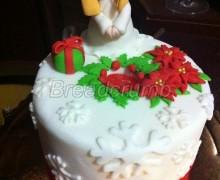 Torta Natale 2012